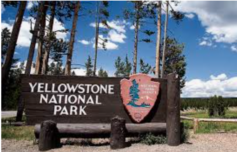 Protect Yellowstone from 480+ wi-fi antennas, Smombie Gate   5G   EMF