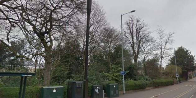 Neighbours delighted as council says no to controversial 5G phone mast, Smombie Gate   5G   EMF